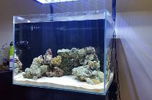 120lt Marine - First Marine Tank - Cycling Thumbnail
