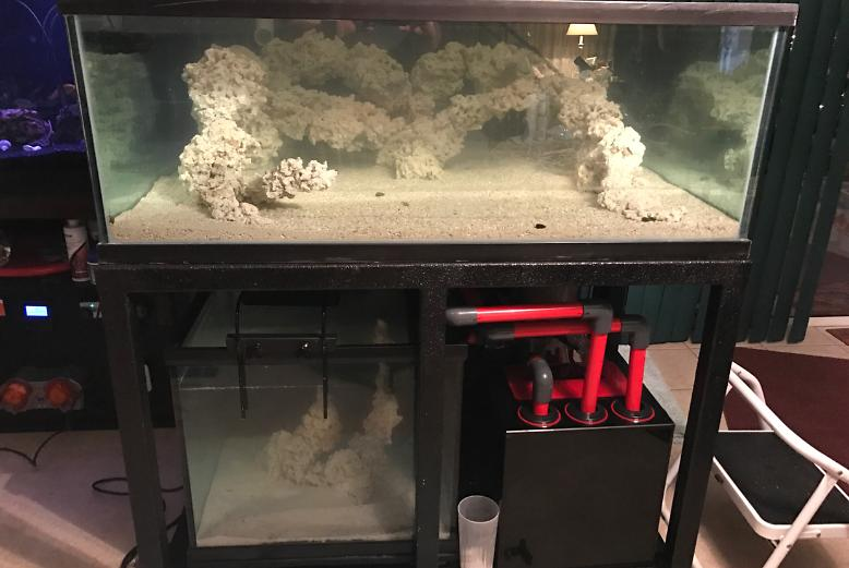 180 Gallon Display on Feb 24, 2017