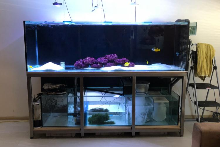 Display Tank - lounge on Apr 15, 2018