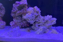 Aquatop 25 Gallon Thumbnail