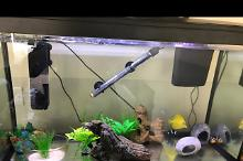 AquaTropic 110 LED Aquarium Thumbnail
