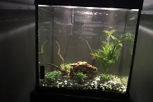 27 Gallon Square  Thumbnail
