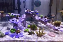 New 30 Gallon Thumbnail