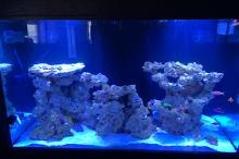Saltwater living room Thumbnail