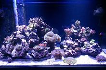 FTS January 6, 2013